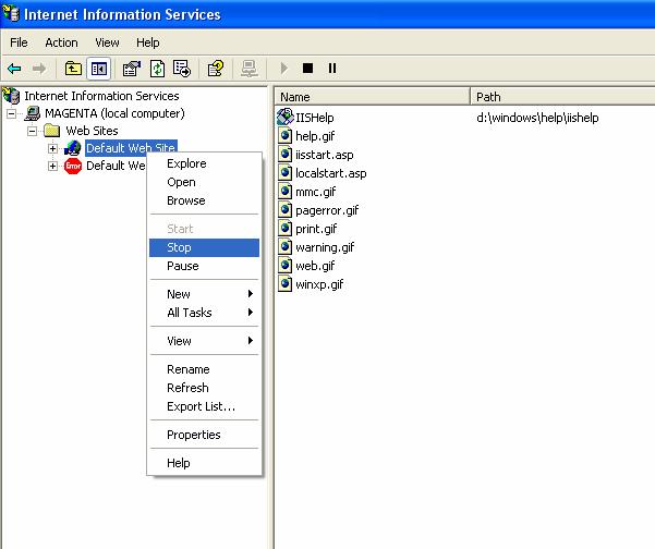 Configuring Multiple Web Sites on Windows XP IIS - SDN